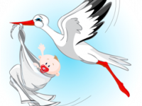 CSED - Csecsemőgondozási díj