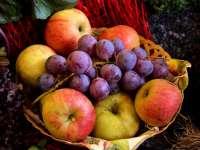 A fruktózmalabszorpcióról: oka, tünetei, vizsgálata, kezelése