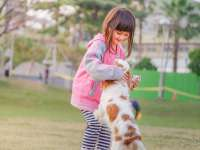 Iskolasokk 3. rész - Kompetencia, öröm, ösztönzés