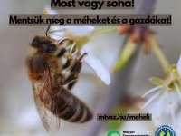 Mentsük meg a méheket és a gazdákat!